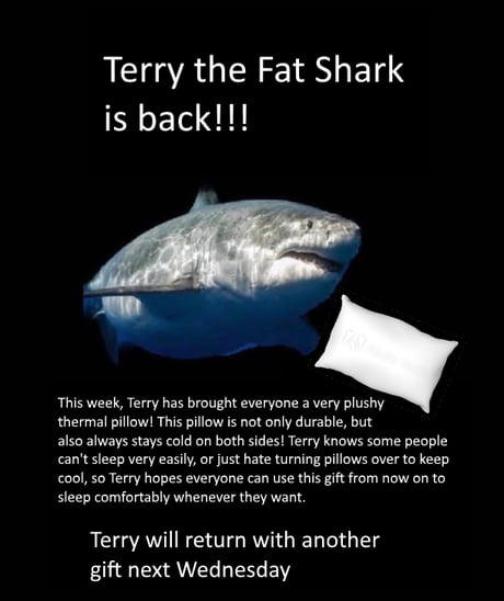 Terry the Fat Shark is back!!! This week, Terry has brought everyone a very plushy thermal pillow! This pillow is not only durable, but also always stays cold on both sides! Terry knows some people can't sleep very easily, or just hate turning pillows over to keep cool, so Terry hopes everyone can use this gift from now on to sleep comfortably whenever they want. Terry will return with another gift next Wednesday Sharks Organism