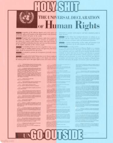 HOLY SHIT THE UNIVERSAL DECLARATION oF Human Rights GO OUTSIDE mgflip com Text