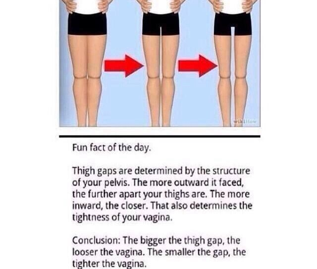 Fun Fact Of The Day Thigh Gaps Are Determined By The Structure Of Your Pelvis