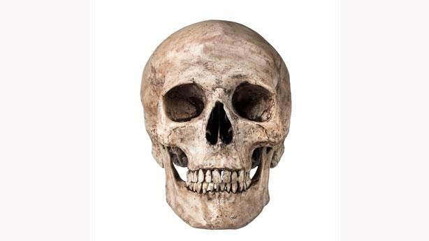 9.Conrad Skull