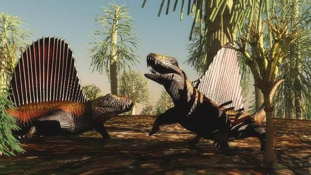 13. Permian end-of-moisture mass extinction fossils