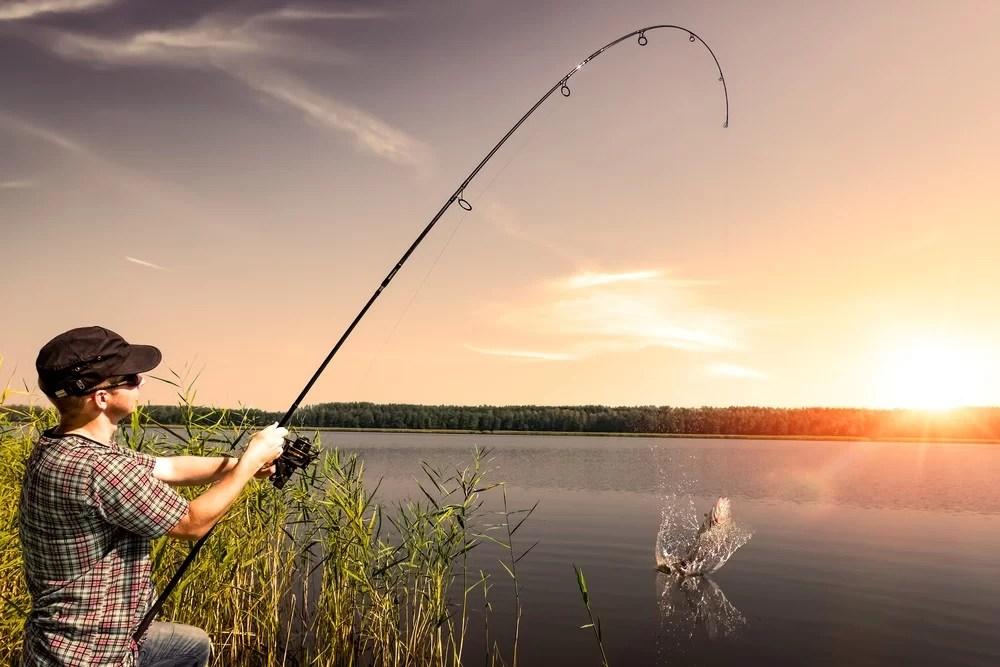 Image result for pescaria puxar linha