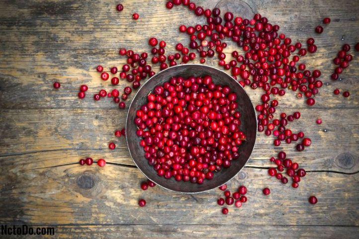 Lingonberries là gì? 2020 - Mas to doc