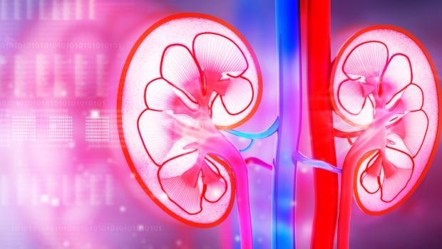 World Kidney Day: 8 Common Causes of Kidney Failure You Should Know About