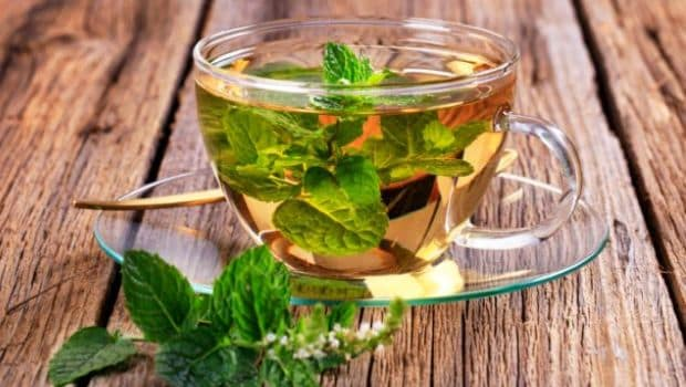 8 Benefits of Peppermint Tea: From Inducing Sleep to Aiding Weight Loss and More! - NDTV Food