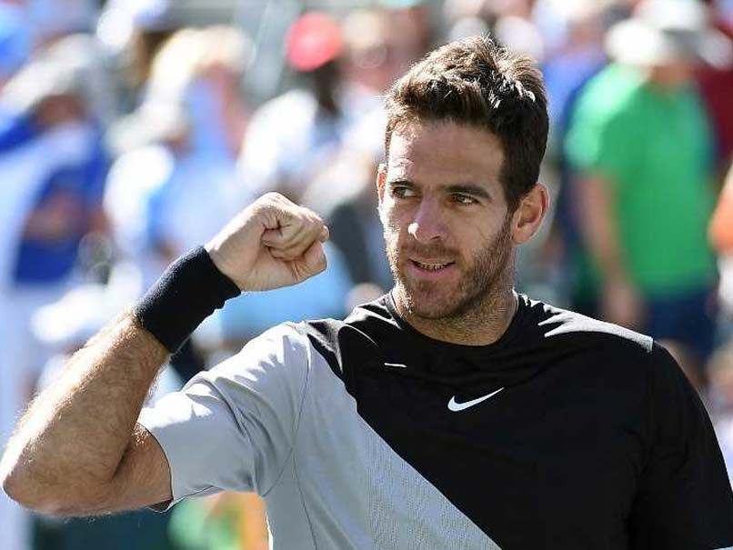 Indian Wells: Juan Martin del Potro Topples Milos Raonic To Set Up Showdown With Roger Federer