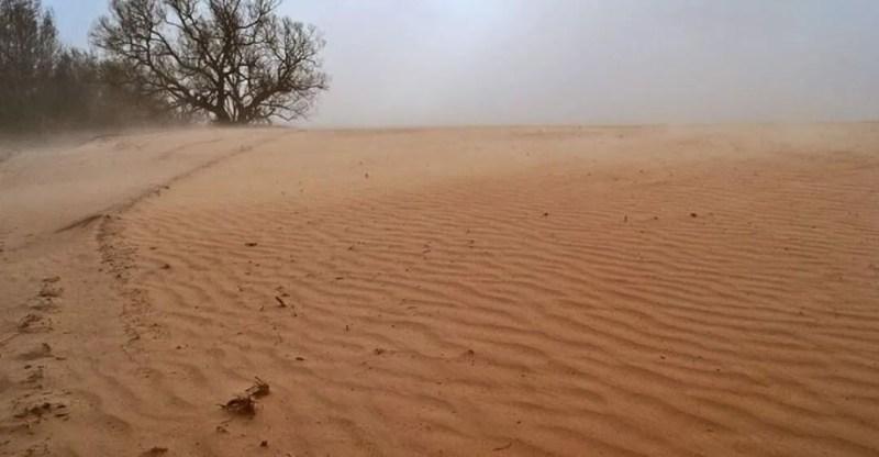 Поля в Чернігівській області після пилової бурі