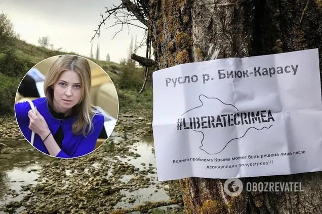Наталія Поклонська звернулася в ООН через неподання води в Крим