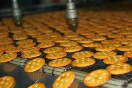 Steps To Start Biscuit Production Business In Nigeria