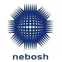 How much is NEBOSH International Diploma?