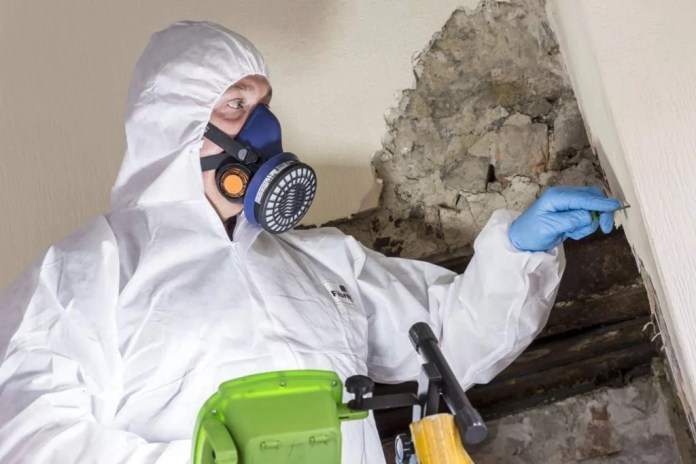 Domestic asbestos survey; Why you need it & How to choose a surveyor