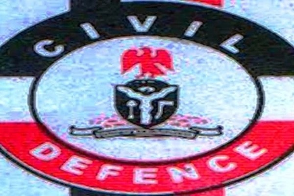 The Nigeria Security And Civil Defence Corps Ranks And Symbols