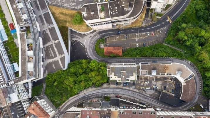 Google introduces AI platform for cities to plant more trees: Know what is it