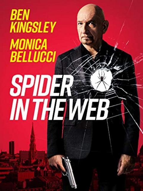 Spider in the Web 2019 Movie Poster