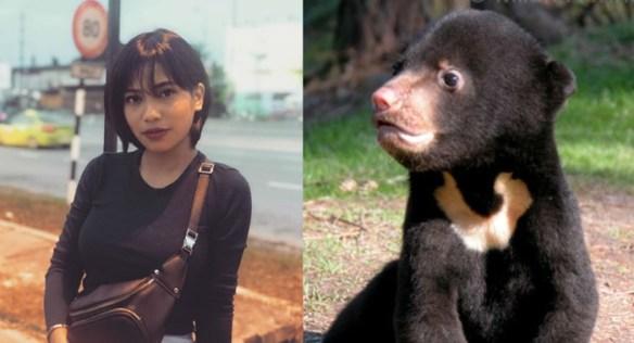 zarith sofia beruang