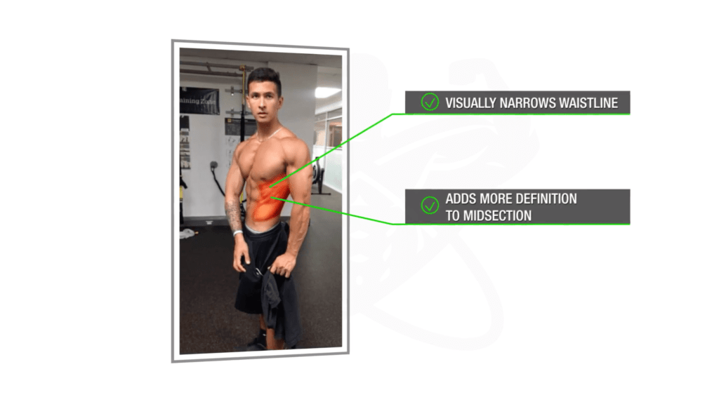 The Largest Science-Based mostly completely Indirect Practice For V-Lower Abs