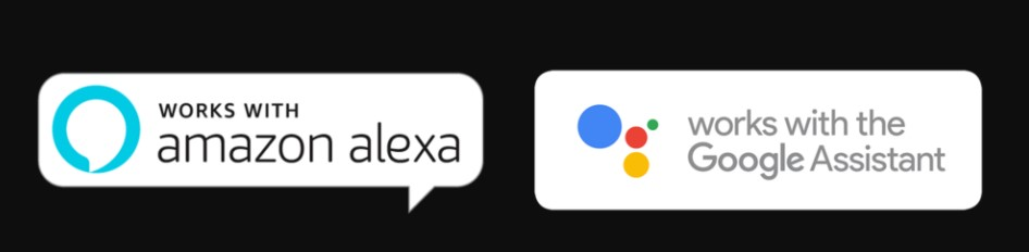 Google Assistant and Amazon Alexa in Samsung smart TVs