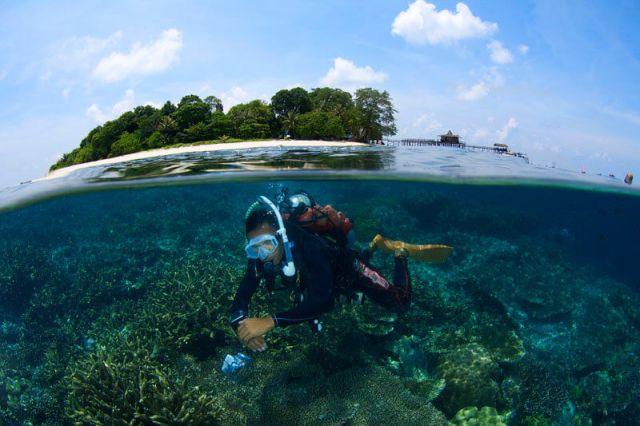 aktiviti selaman skuba di Pulau Sipadan