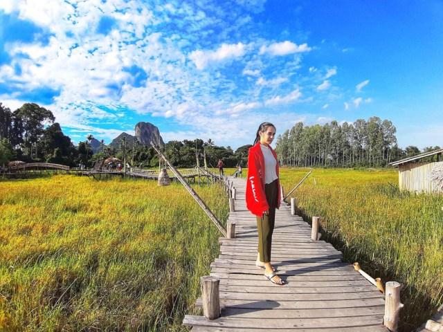 seorang wanita berdiri berlatar belakang sawah