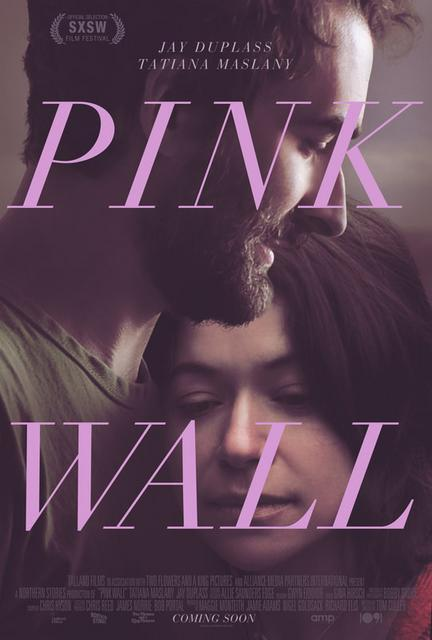 Pink Wall 2019 Movie Poster