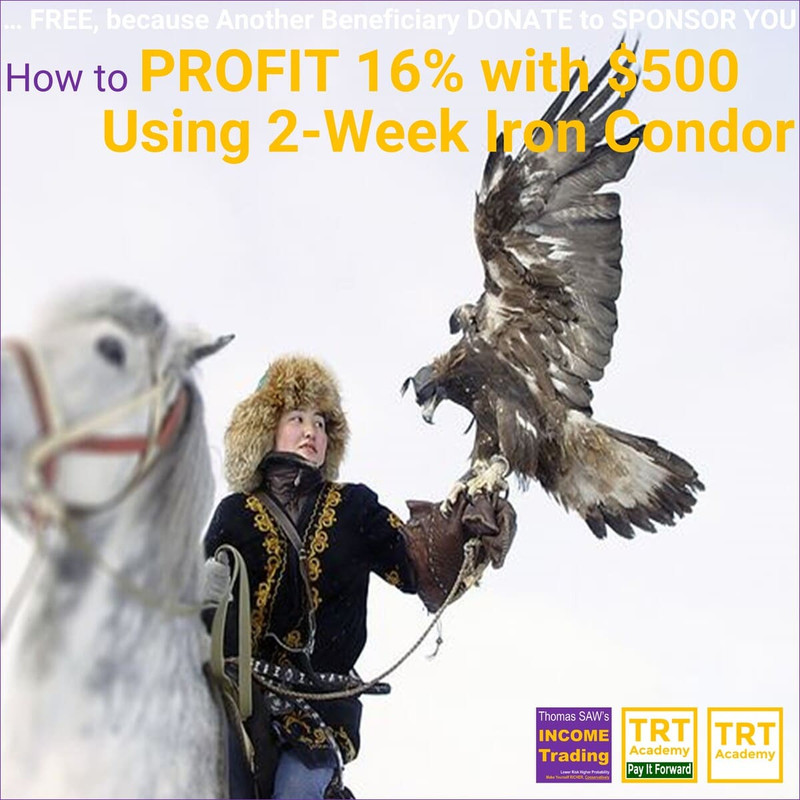 Yes! Send Me the Video – How to Make 16% Profit with $500 by 2-Week Iron Condor