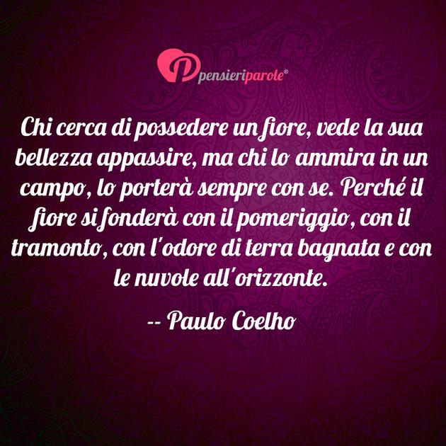 Immagine Con Frase Saggezza Di Paulo Coelho Chi Cerca Di