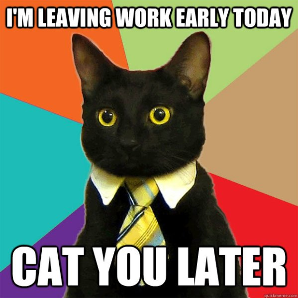 I'm leaving work early today Cat you later - Business Cat ...