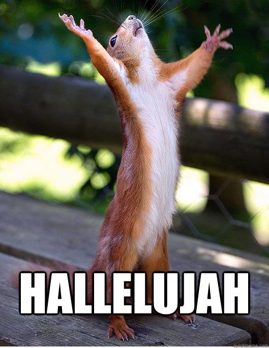 hallelujah  - Hallelujah Squirrel