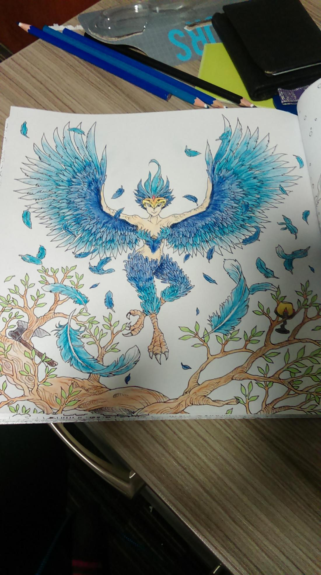 first attempt at adult colouring books any tips ? : coloring