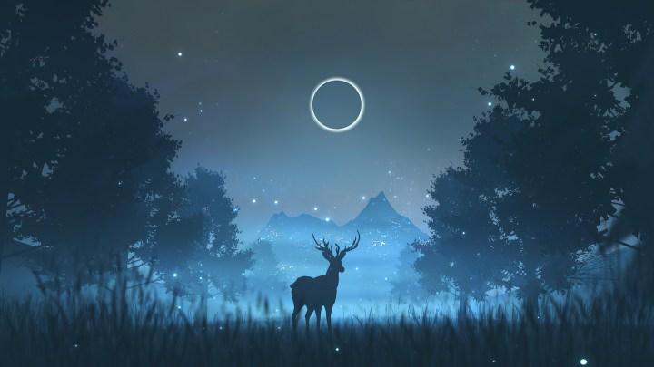 Reindeer in amazing night[1920*1080]