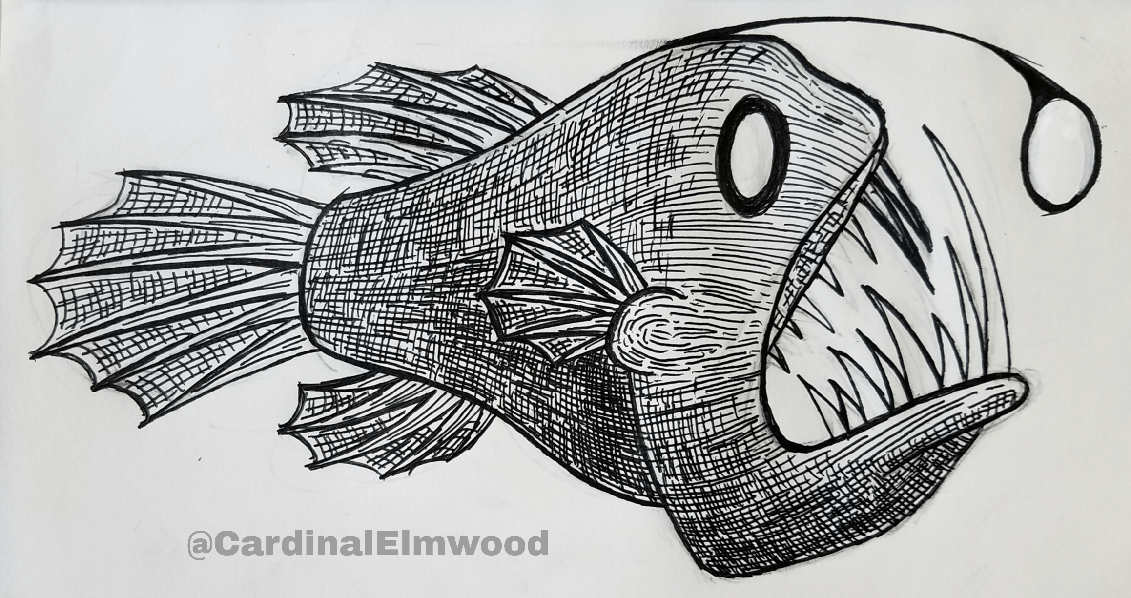 Small Angler Fish I Did With A Gel Pen Drawing
