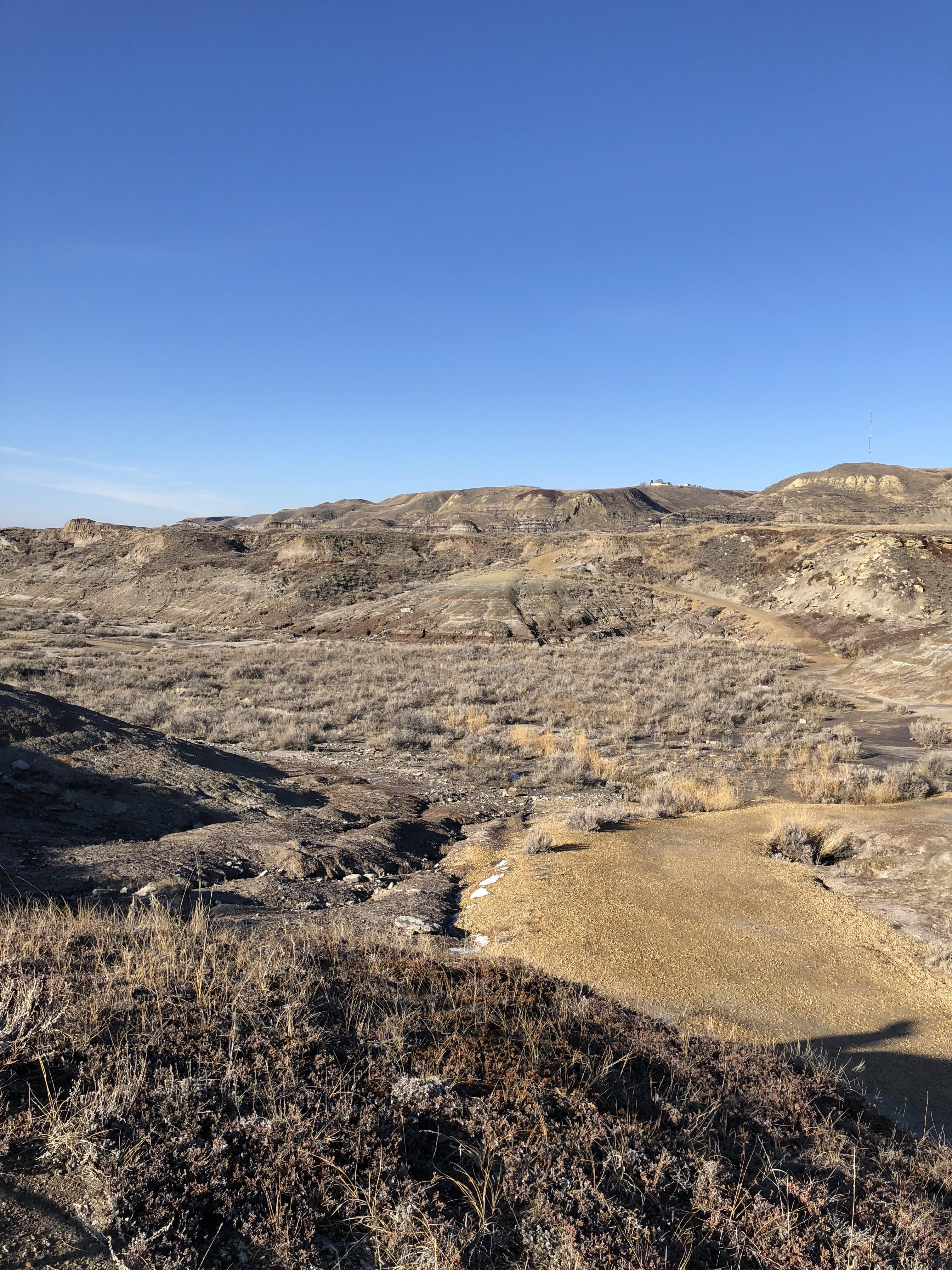 Fall In The Badlands Alberta