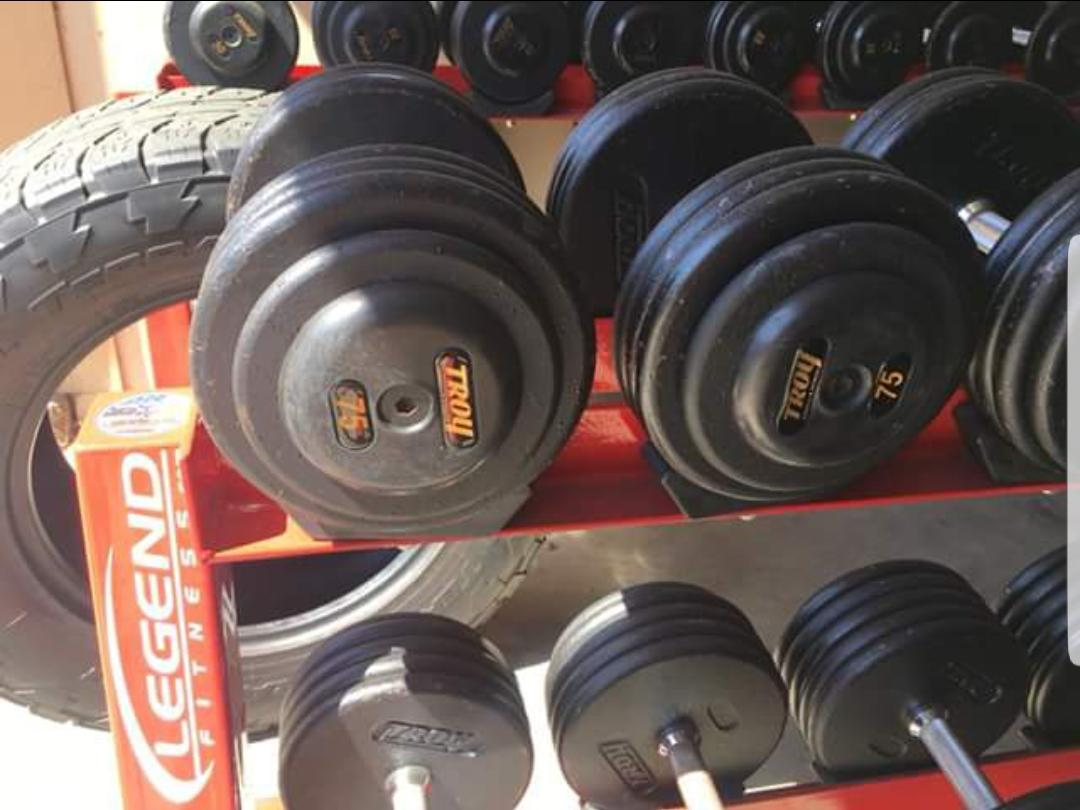 troy pro style dumbbells are these