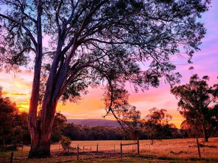 Cave Hill Creek, Raglan Victoria (Photo credit to @cavehillcreek) [1080 x 811]