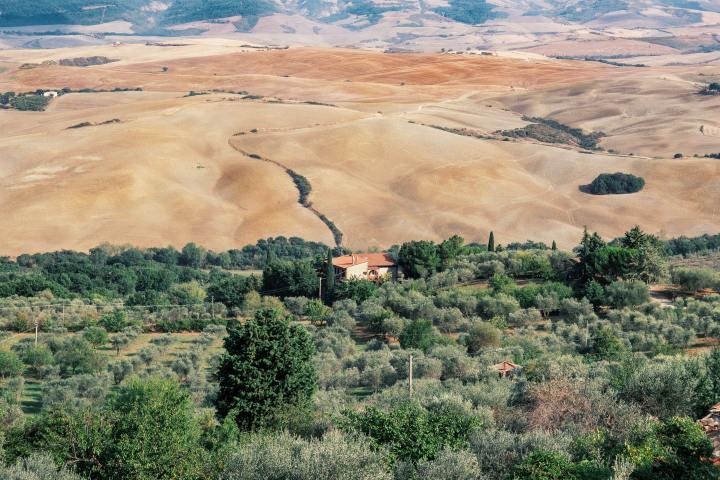 Tuscan landscape near Siena, Italy (Photo credit to Claudio Carrozzo) [4981 x 3321]