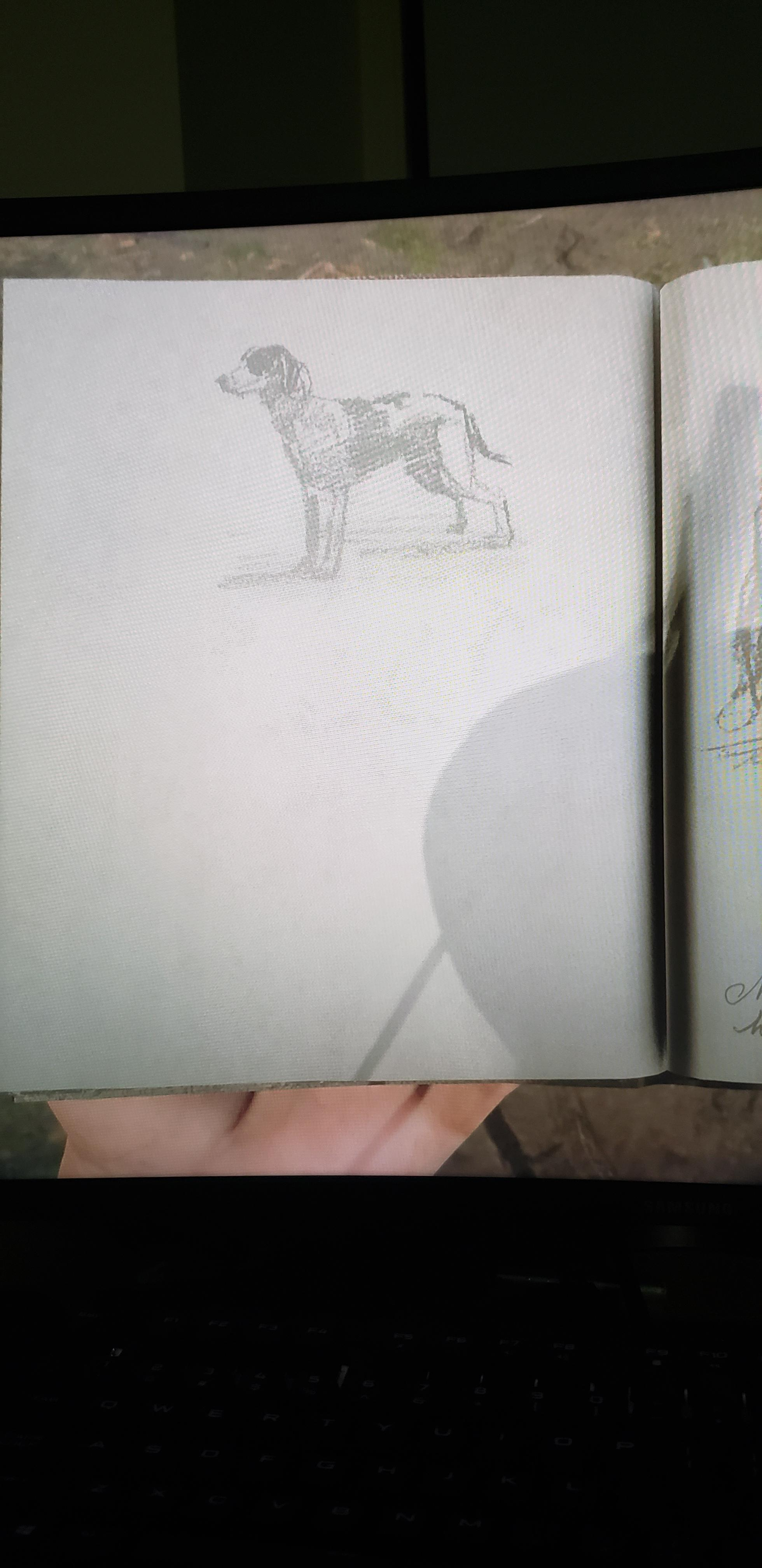 Arthur Morgan Drawings Journal