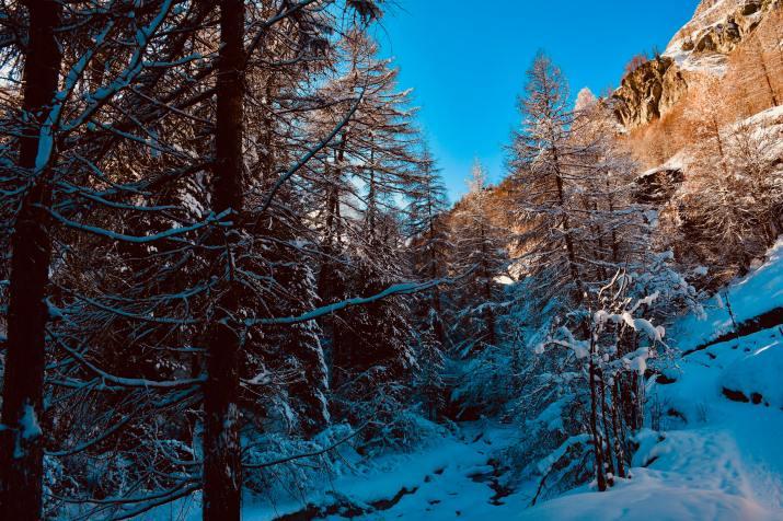 Zermatt, Switzerland (Photo credit to Angelo Burgener) [5568 x 3712]
