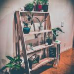 Made My Girlfriend A Plant Stand From A Pallet For Her Birthday Indoorgarden