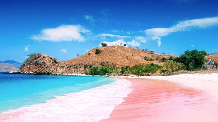 Pink beach [1920×1080]