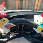 My New Driving Buddies Still On The Hunt For My Melody I Got Them From Target Sanrio