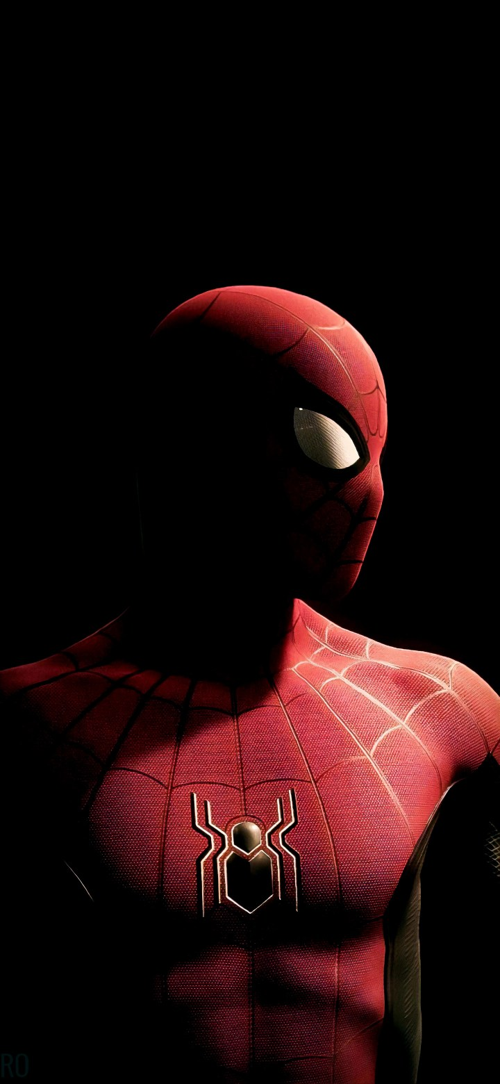 Spiderman (1440×3120)