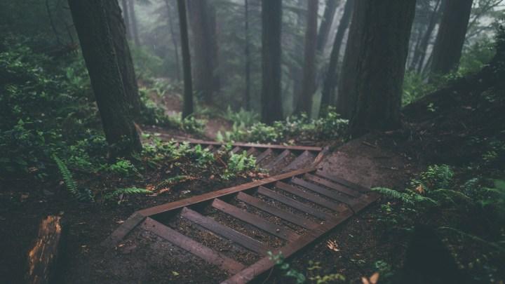 [1920×1080] Rainy