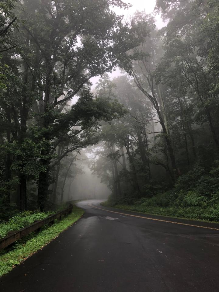 Taken with an iPhone 8 almost 3 years ago on the Blue Ridge Parkway in North Carolina.