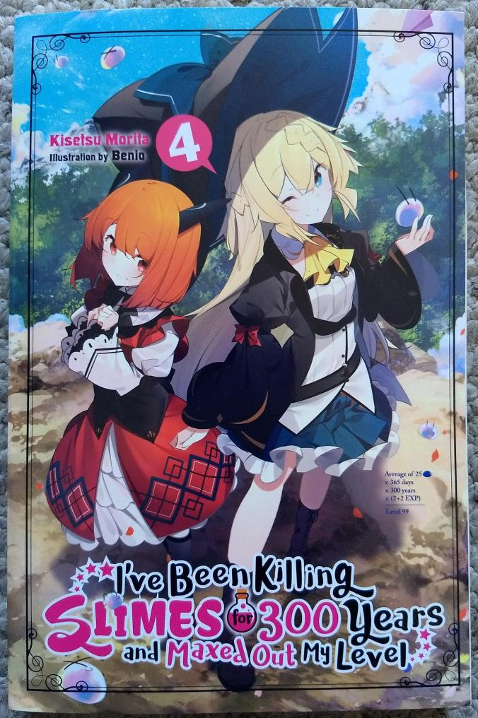 New release Light Novel mail today!