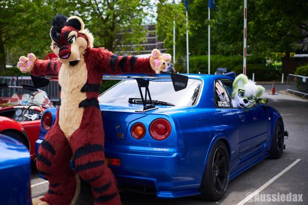 Check out my car! : furry
