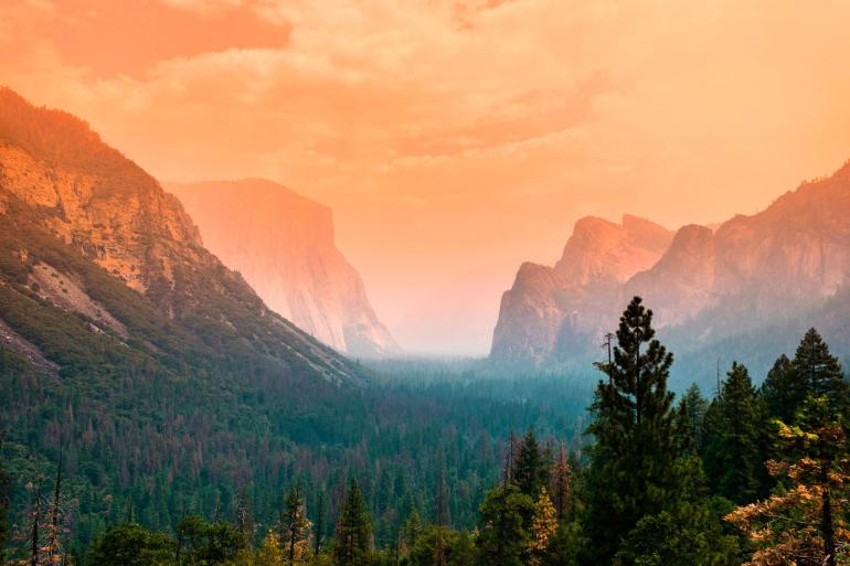 High summer, Yosemite National Park, California. Source: Reddit