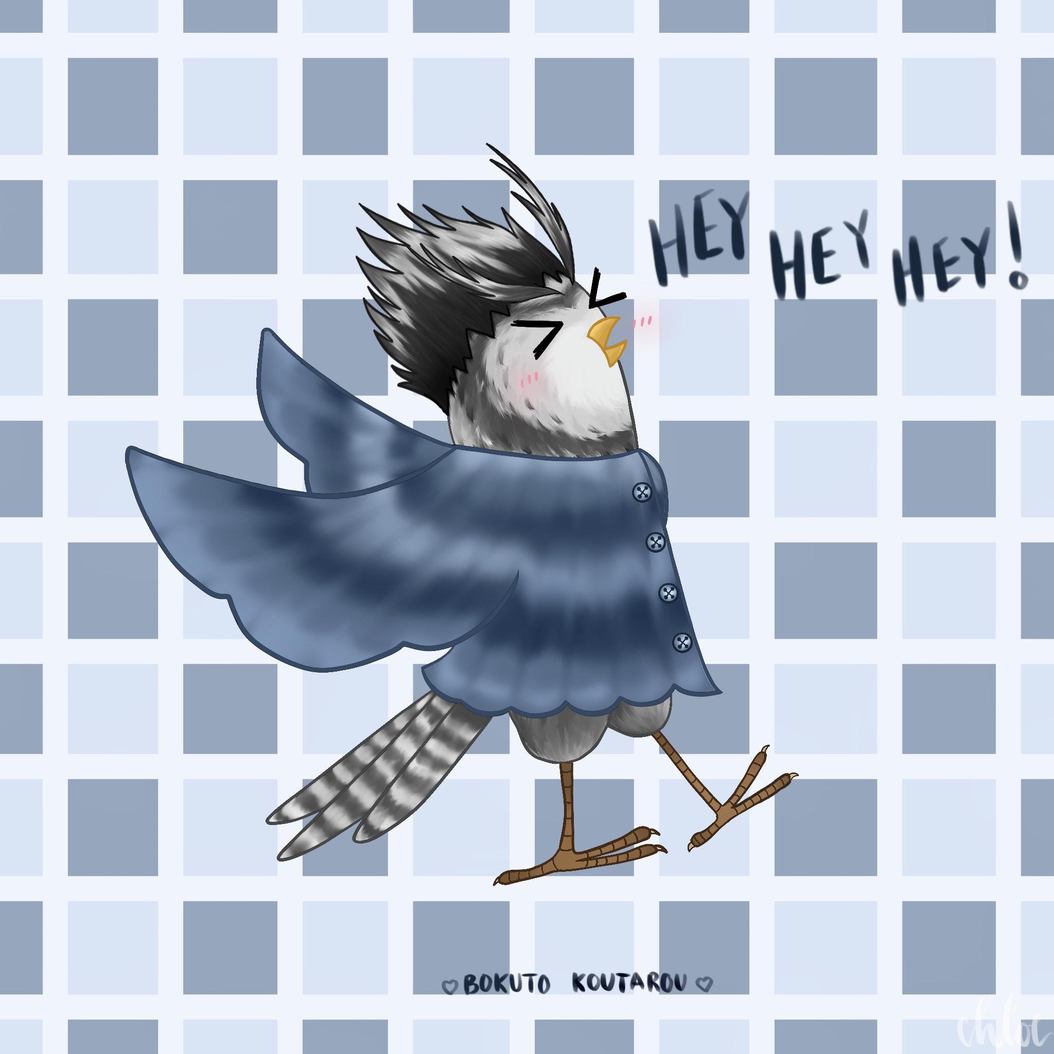 hey hey hey bokuto owl drawn by me