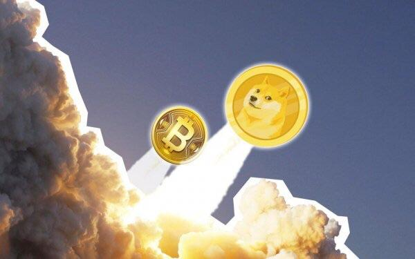 To the moon !!!! 🐕🚀🌙 : dogecoin