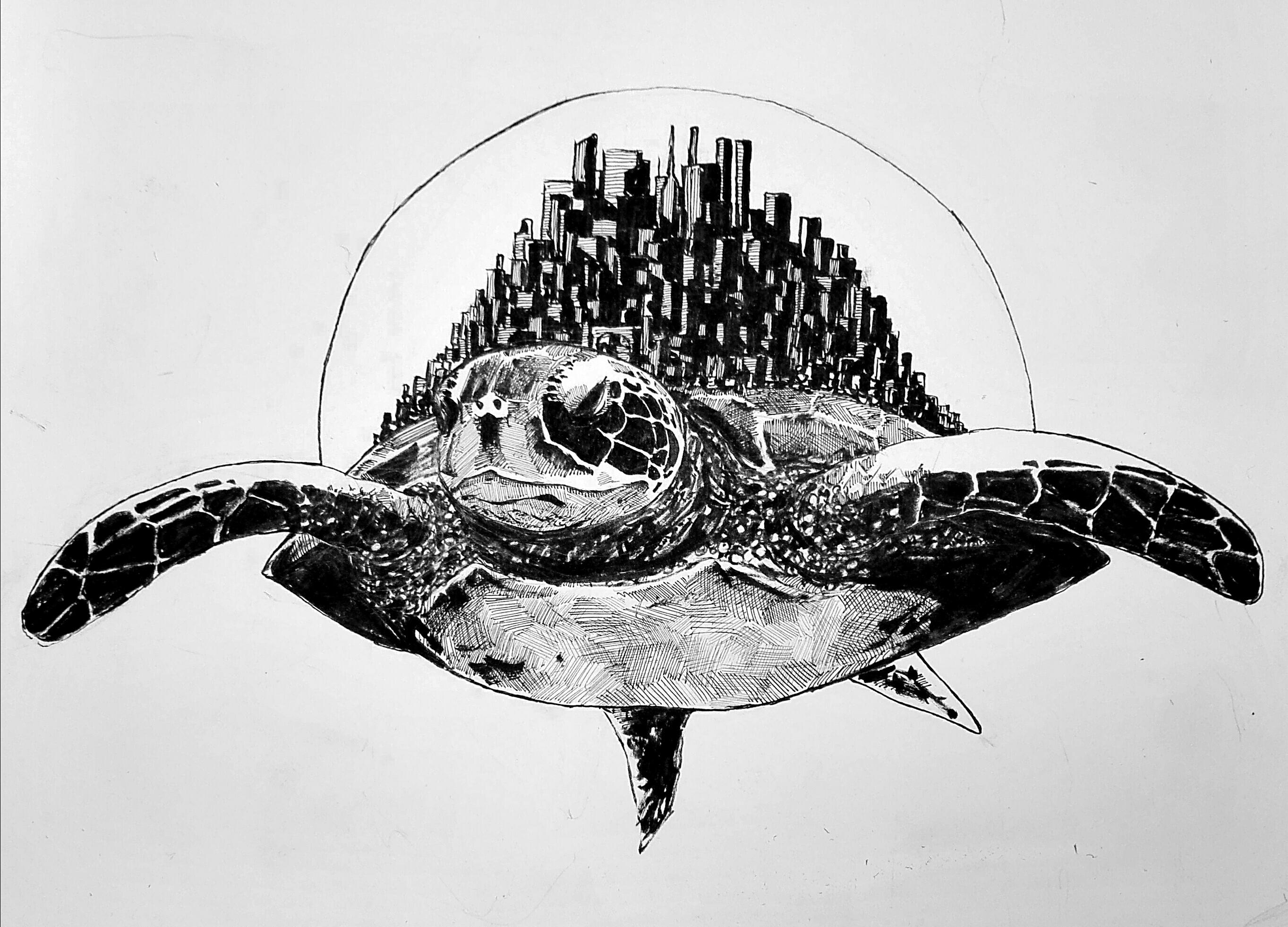 Space Turtle Pen And Ink A4 Art