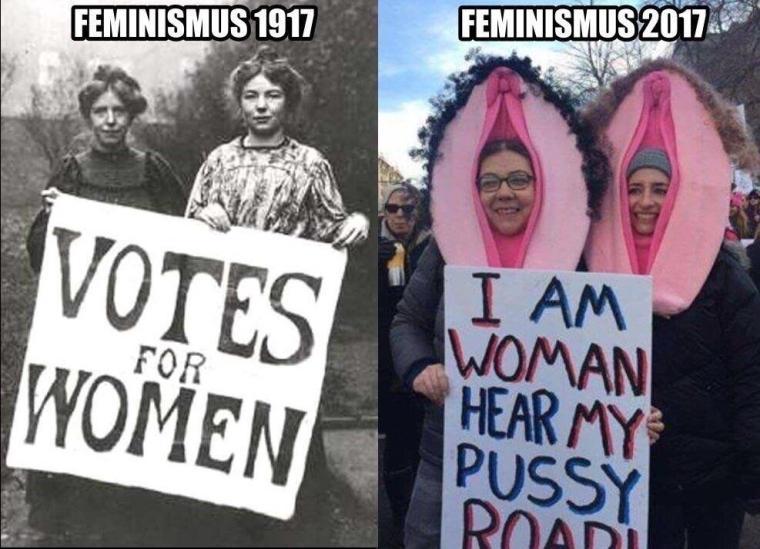 Image result for feminazi memes